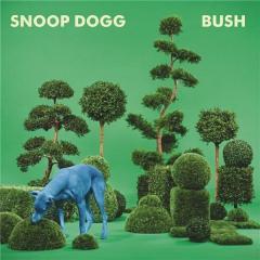 Bush - Vinyl