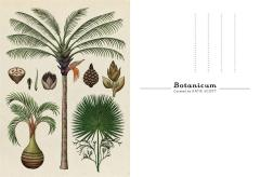 Carte postala - Botanicum - Welcome To The Museum