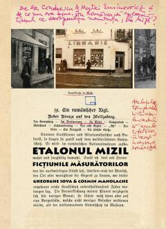Etalonul Mizil