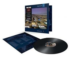 A Momentary Lapse of Reason - Vinyl