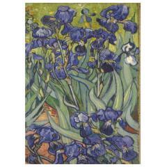 Carnet mediu - Irisi de Vincent van Gogh