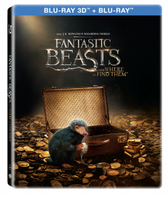 Animale Fantastice si unde le poti gasi 3D (Blu Ray Disc) Steelbook / Fantastic Beast and Where to Find Them