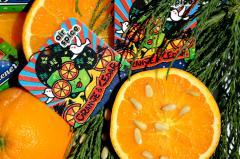 Odorizant - Orange Cedar