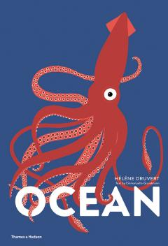 Ocean (Lift the Flap Book)
