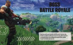 Fortnite Ultimate Winner's Guide
