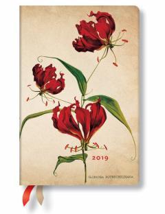 Agenda - Gloriosa Lilly 2019