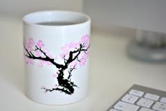 Cana termosensibila - Flori de cires