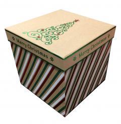 Cutie pentru cadou - Medium