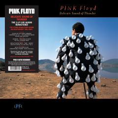 Delicate Sound Of Thunder - Vinyl