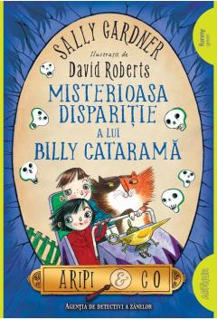 Misteroasa disparitie a lui Billy Catarama