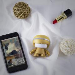 Boxa Bluetooth - Mini XBoy Gold