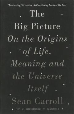 The Big Picture - On the Origins of Life, Meaning and the Universe Itself