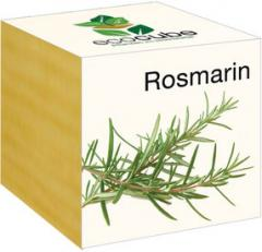 Ecocube - Rosmarin