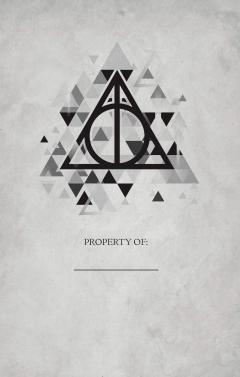 Set Carnet si Pix Elder Wand - Harry Potter Deathly Hallows