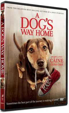 Drumul unui caine catre casa / A Dog's Way Home