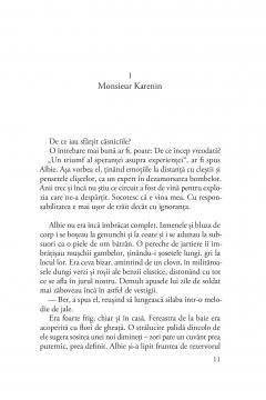 Monsieur Karenin