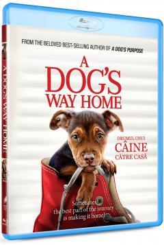 Drumul unui caine catre casa / A Dog's Way Home (Blu-Ray Disc)