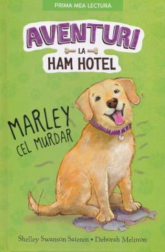 Aventuri la Ham Hotel