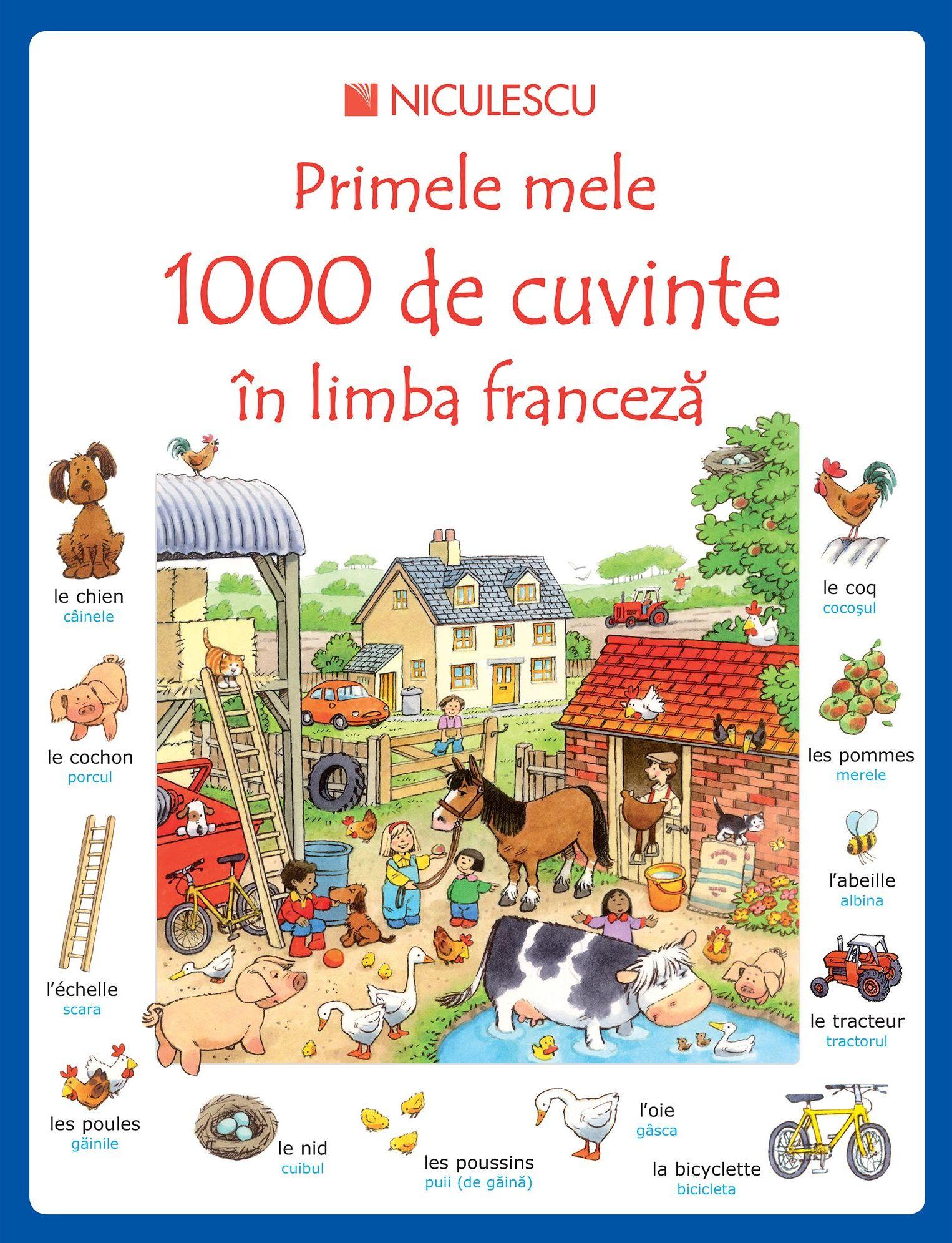 Cate cuvinte are limba franceza