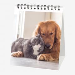 Calendar 2020 - Best Friends