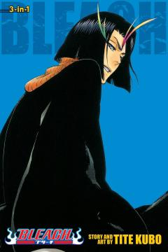 Bleach 3-in-1 Edition Vol. 13