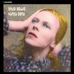 Hunky Dory - Vinyl