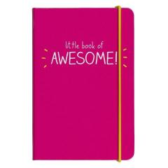 Carnet - Little Book of Awesome Pink