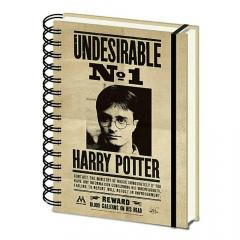 Carnet 3D - Harry Potter - Sirius and Harry