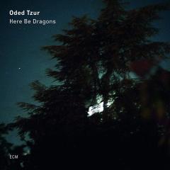 Here Be Dragons - Vinyl