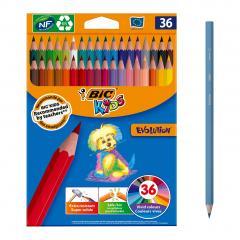 Set 36 creioane colorate - Evolution
