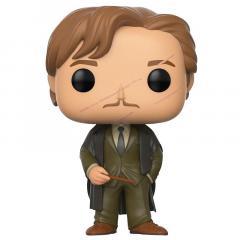 Figurina - Remus Lupin - Harry Potter