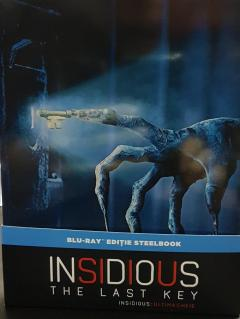 Insidious: Ultima Cheie (Insidious: Capitolul 4) (Blu Ray Disc) Steelbook / Insidious: The Last Key