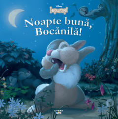 Noapte buna, Bocanila!