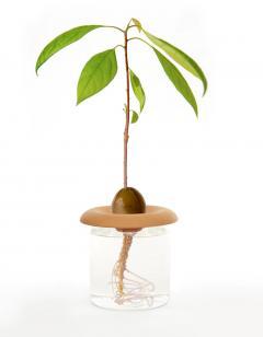 Kit pentru seminte - Teracota Seed Sprouters