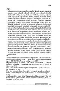 Dictionar de epitete - Victoria Braga