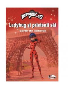 Ladybug si prietenii sai - carte de colorat