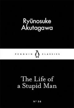 The Life of a Stupid Man