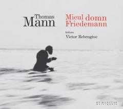 Micul domn Friedemann - Audibook