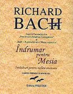 Iluzii Richard Bach Pdf